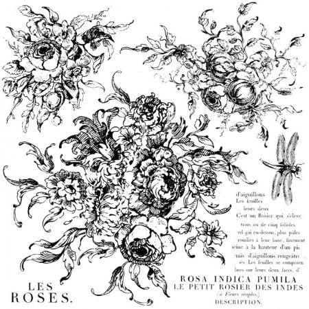 Rose Toile