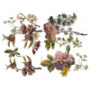 Floral Anthology (expected : May)